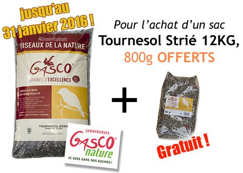 Promo Tournesol Strié 12Kg