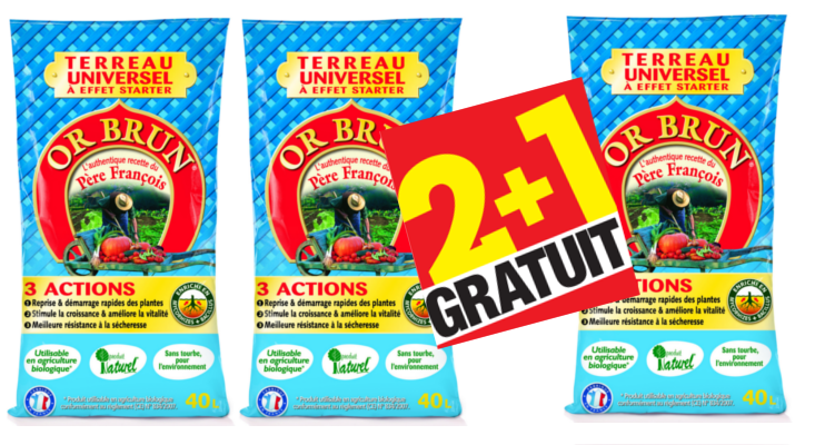 OrBrun2+1